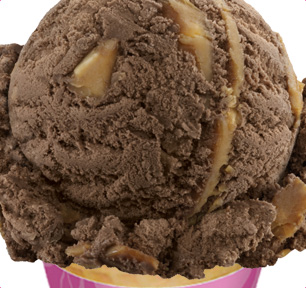 Pralines 'n Cream Ice Cream